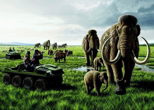 pleistocene-park (1)