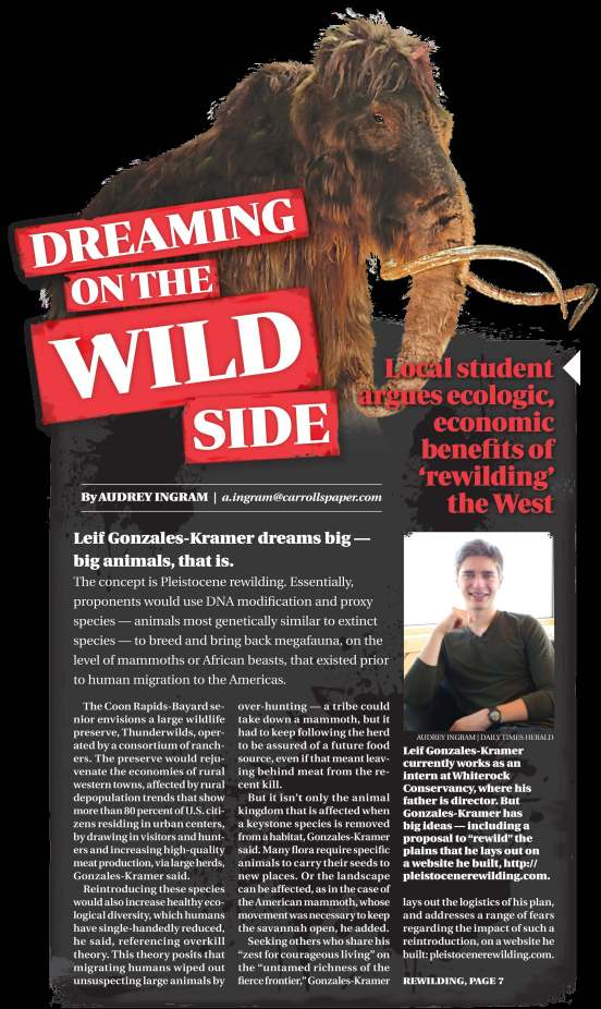 Dreaming on the Wild Side - The Daily Herald - pt. 1